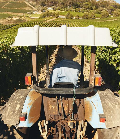 tractor machine during harvest